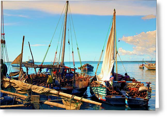 Sleepy Sail Boats Zanzibar Greeting Card