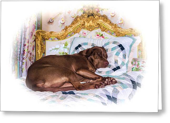 Sleepy Time Gal Greeting Card