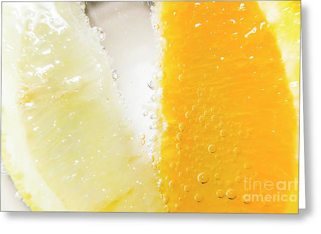 Slice Of Orange And Lemon In Cocktail Glass Greeting Card