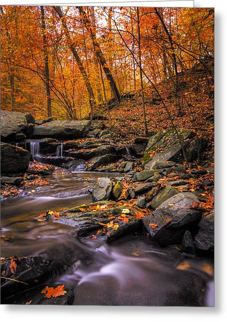 Sliding Autumn Greeting Card by Edward Kreis