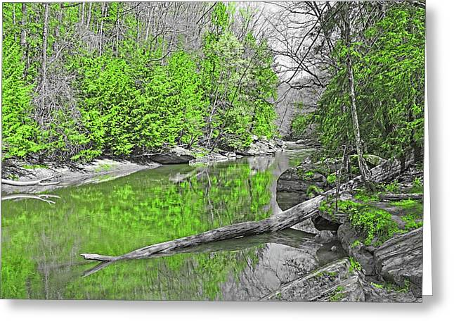 Greeting Card featuring the photograph Slippery Rock Creek In Spring by Digital Photographic Arts
