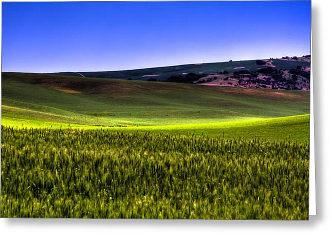 Sliver Of Sunlight On The Palouse Hills Greeting Card by David Patterson