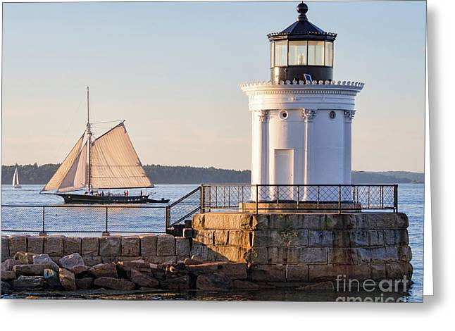 Sloop And Lighthouse, South Portland, Maine  -56170 Greeting Card