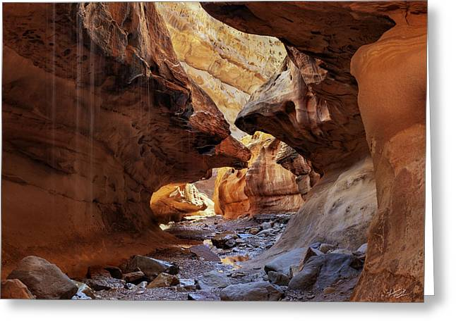 Slot Canyon Forms And Light Greeting Card by Leland D Howard