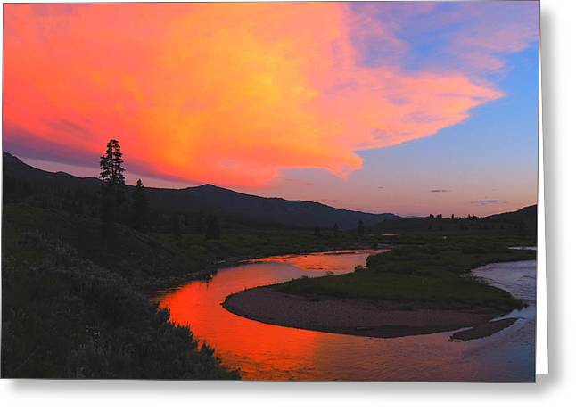 Slough Creek Sunset Greeting Card by Ryan Scholl
