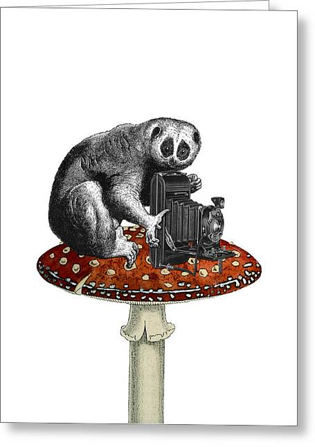 Slow Loris With Antique Camera Greeting Card by Madame Memento