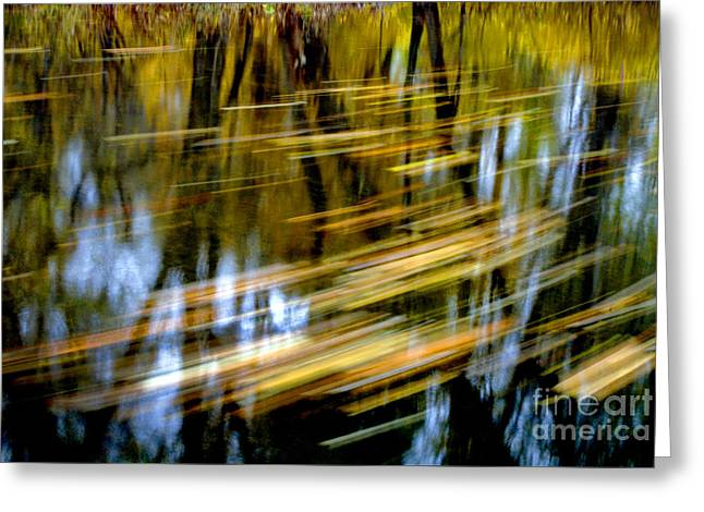 Slow Moving Stream - 2959 Greeting Card by Paul W Faust -  Impressions of Light