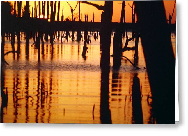 Slue Sunset Greeting Card by Myrna Salaun