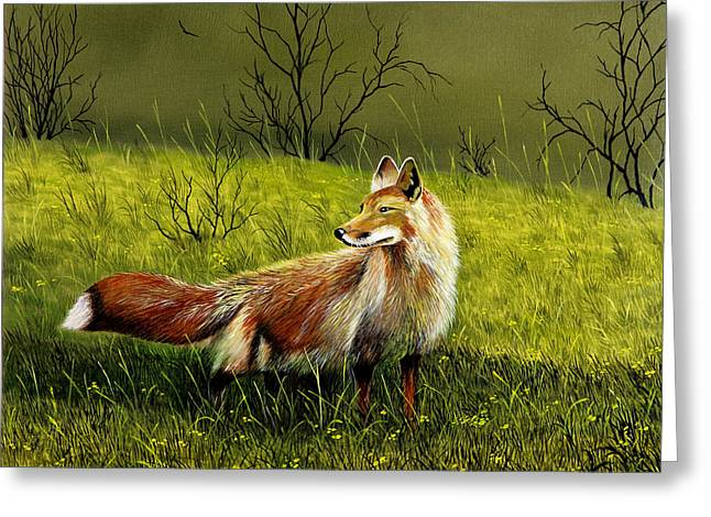 Sly Fox Greeting Card by Don Griffiths