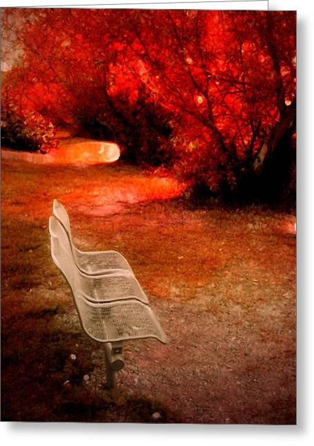 Small Bench In A Red World Greeting Card