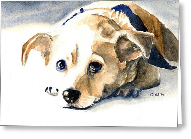 Small Dog With Tan Short Hair  Greeting Card