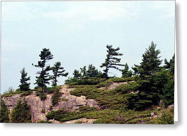 Greeting Card featuring the photograph Small Island by Lyle Crump