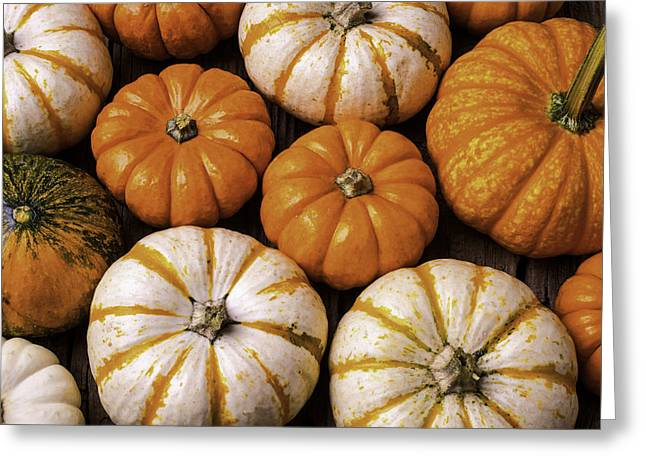 Small Pumpkins Greeting Card by Garry Gay