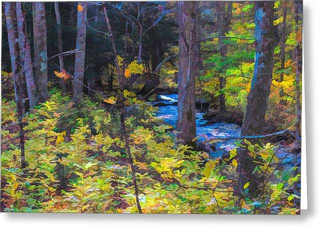 Small Stream Through Autumn Woods Greeting Card