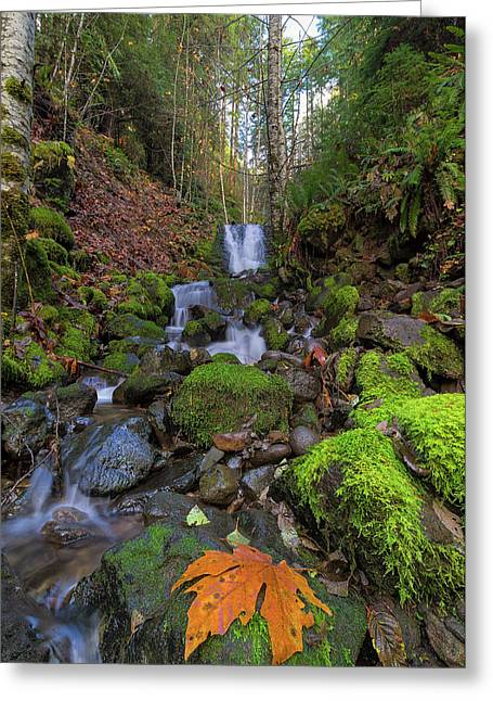 Small Waterfall At Lower Lewis River Falls Greeting Card by David Gn