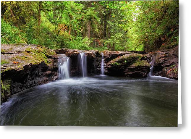Small Waterfall At Rock Creek Greeting Card by David Gn