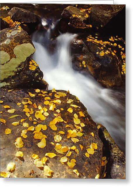 Small Waterfall In Autumn Greeting Card by Douglas Pulsipher