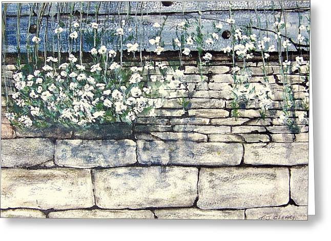 Small White Flowers Greeting Card by Terence John Cleary