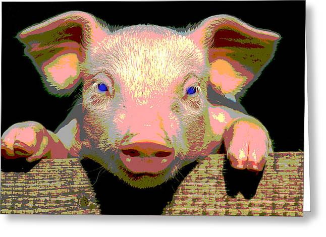 Smart Pig Greeting Card by Charles Shoup