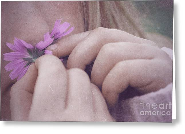 Smell Life - V05t Greeting Card by Variance Collections