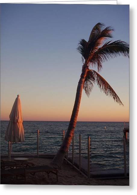 Smile With The Rising Sun Greeting Card by JAMART Photography