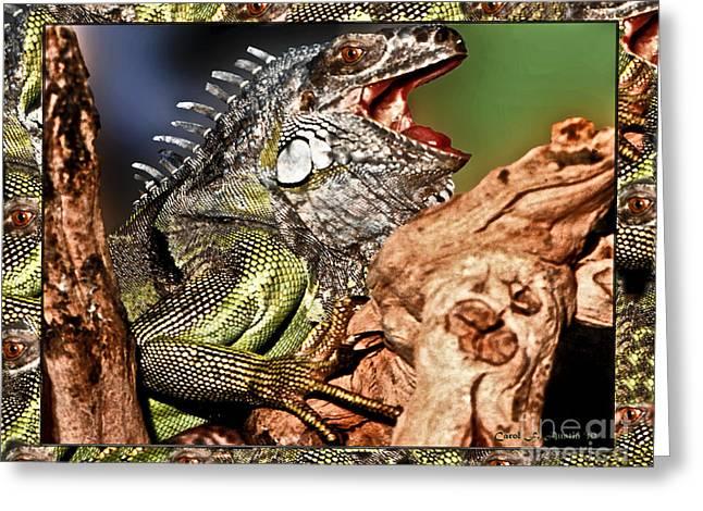 Smiling Adult Iguana  Greeting Card by Carol F Austin