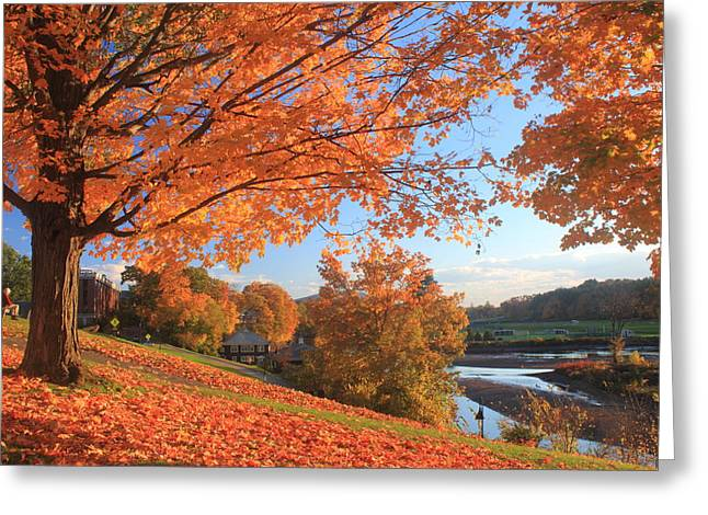 Northampton Greeting Cards - Smith College Fall Foliage over Paradise Pond Greeting Card by John Burk