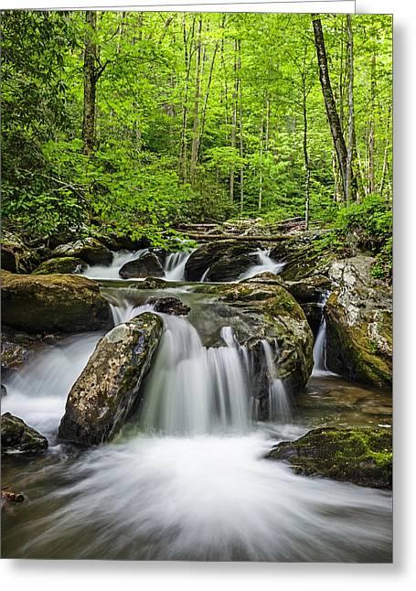 Smith Creek, Springtime Greeting Card