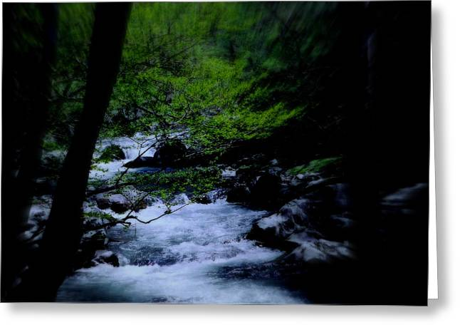 Smokey Mountain Creek Greeting Card by Martin Morehead