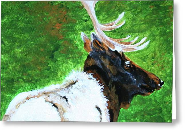 Smokey Mountain Elk Greeting Card