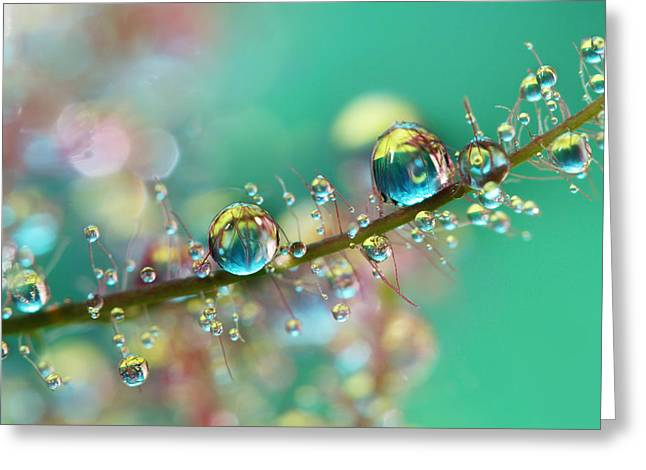 Water Droplets Greeting Cards - Smokey Rainbow Drops Greeting Card by Sharon Johnstone