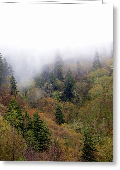 Smoky Mount Vertical Greeting Card by Marty Koch