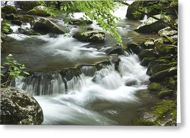 Smoky Mountain Rapids Greeting Card by Andrew Soundarajan