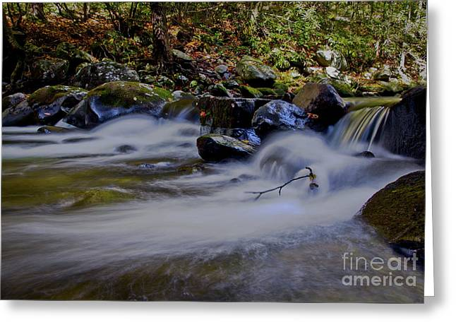Greeting Card featuring the photograph Smoky Mountain Stream by Douglas Stucky