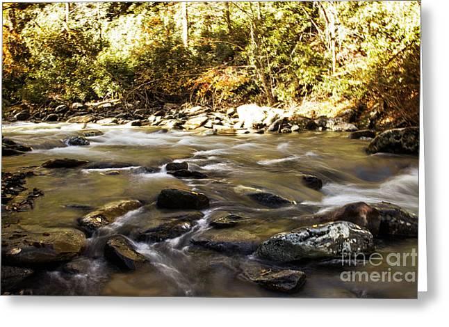 Smoky Mountain Stream Greeting Card by Tom Gari Gallery-Three-Photography
