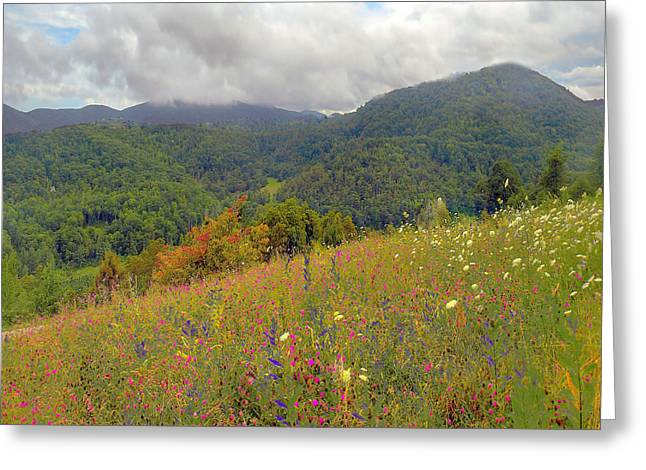 Greeting Card featuring the photograph Smoky Mountains by Raymond Earley