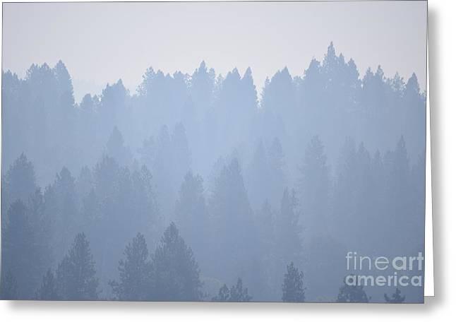 Smoky Pines Greeting Card