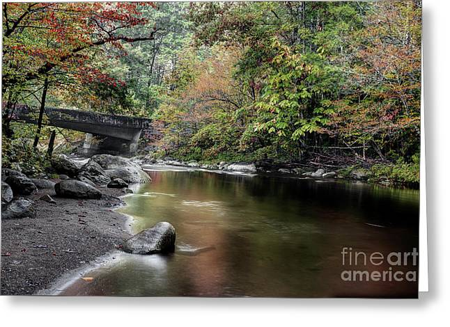Smooth Flow Through October Greeting Card by Michael Eingle