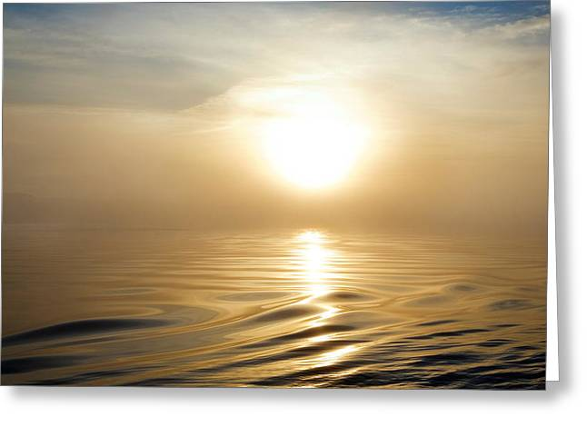 Smooth Sea At Misty Dawn, Waterford Greeting Card by Panoramic Images