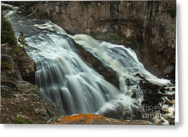 Smooth Water Of Gibbon Falls Greeting Card by Robert Bales