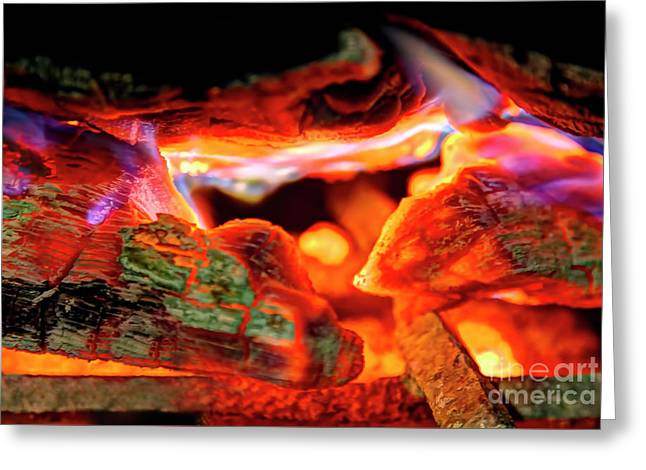 Smores To Follow Greeting Card by Gary Holmes