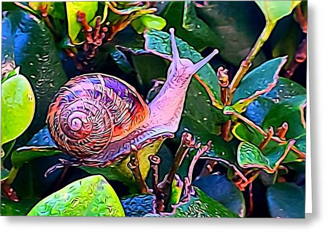 Snail 5 Greeting Card