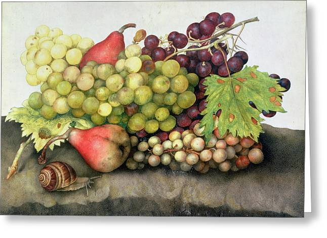 Grape Vines Paintings Greeting Cards - Snail with Grapes and Pears Greeting Card by Giovanna Garzoni