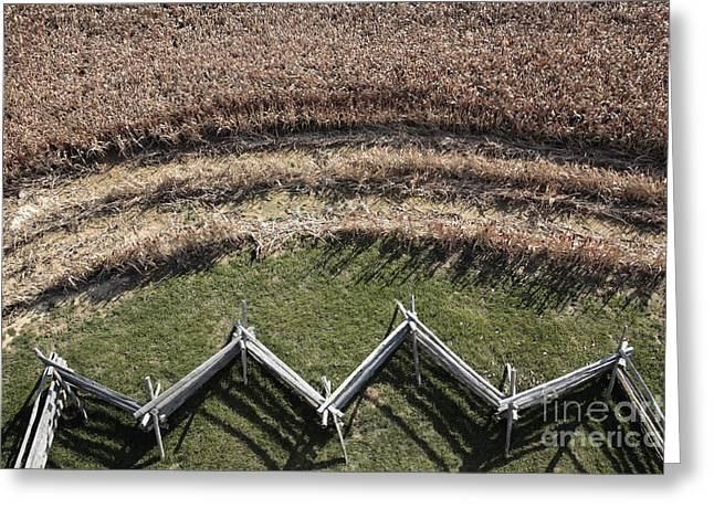 Snake-rail Fence And Cornfield Greeting Card