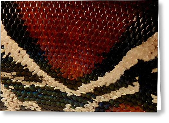 Snake's Scales Greeting Card