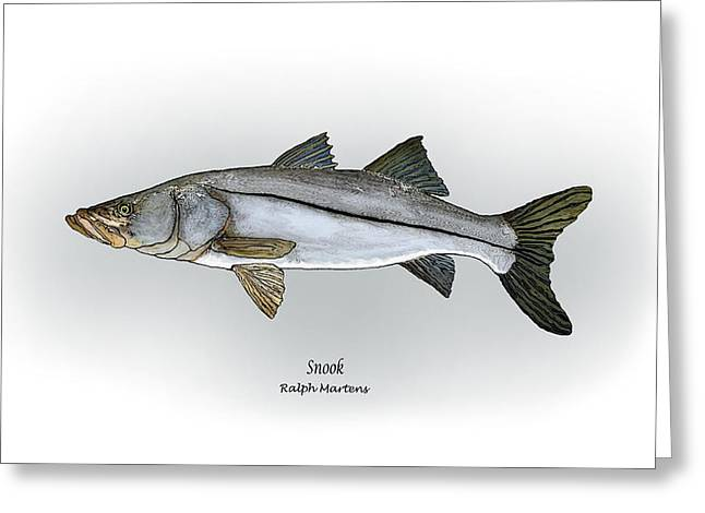 Snook Greeting Card by Ralph Martens
