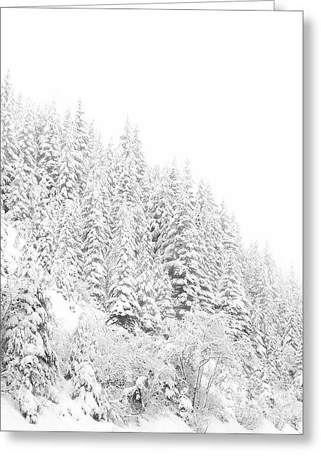 Snoqualmie Pass Greeting Card by Ann Johndro-Collins