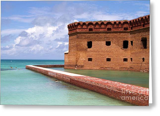 Snorkelers Fort Jefferson Greeting Card