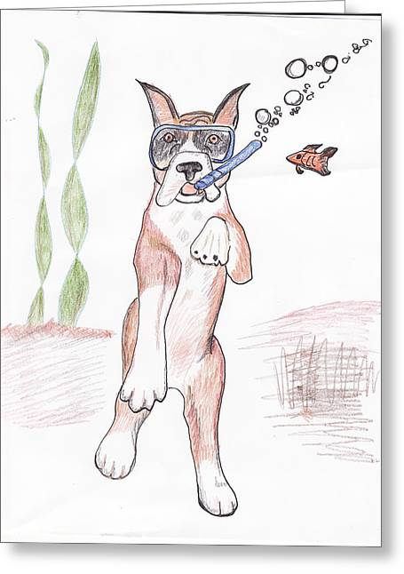 Snorkeling Boxer Greeting Card by Nancy Suiter