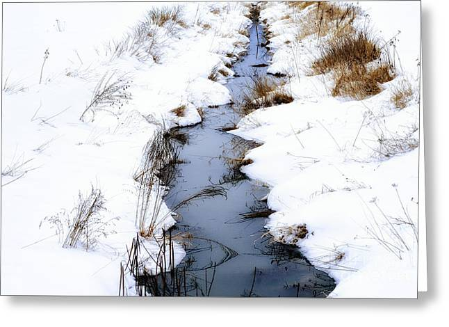 Snow And Creek Welch Glade Greeting Card